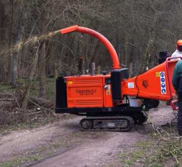 Two tree cutters using a wood chipper