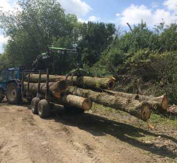 Scott Fraser Training's blue Valtra tractor with white wheels towing a trailer full of logs