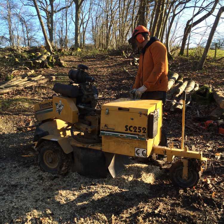 Stumpgrinder training