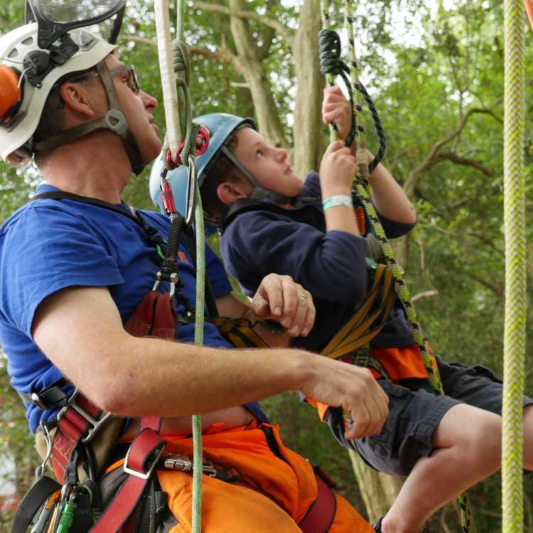 tree climbing training