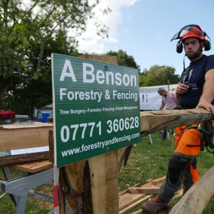 Alex Benson Forestry and Fencing