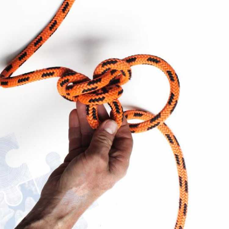 Hand with rope showing the fifth step on creating an alpine butterfly knot.