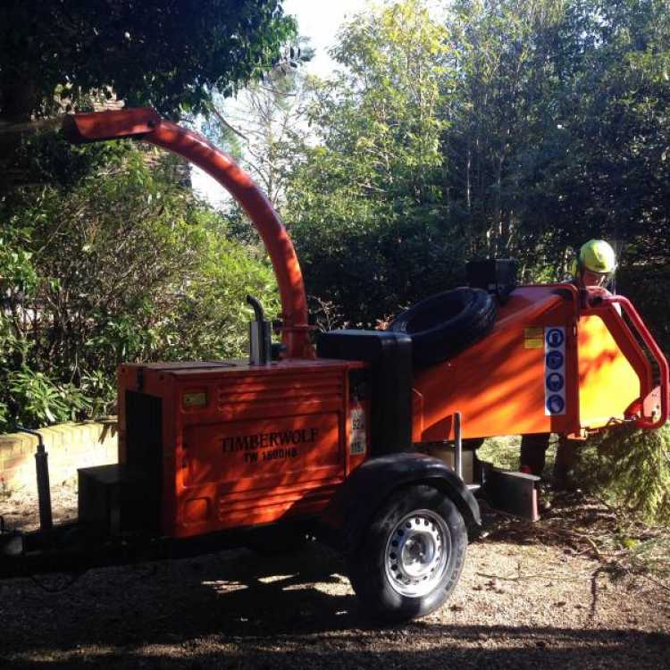 Timberwolf Chipper being used by the Scott Fraser Training team in the middle of a woodland area during the day