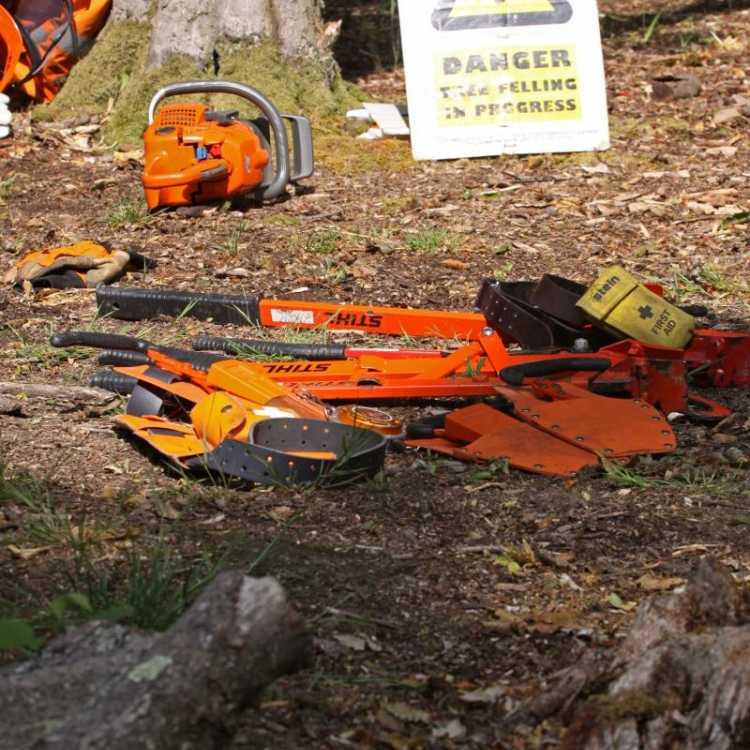 felling tools