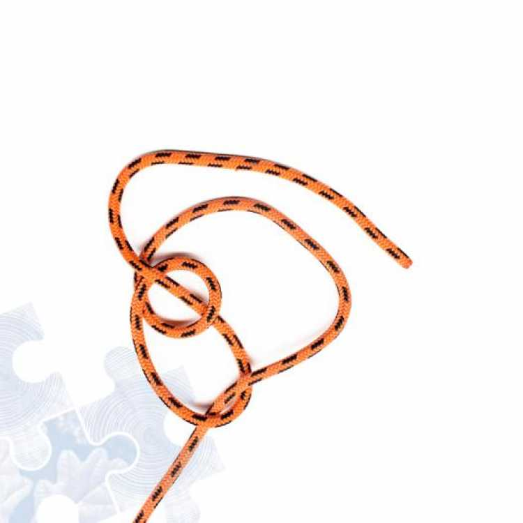 Third step on how to tie a Running Bowline Knot