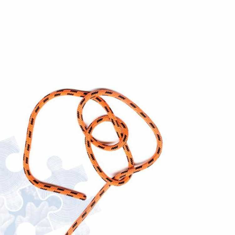 Fourth step on how to tie a Running Bowline Knot