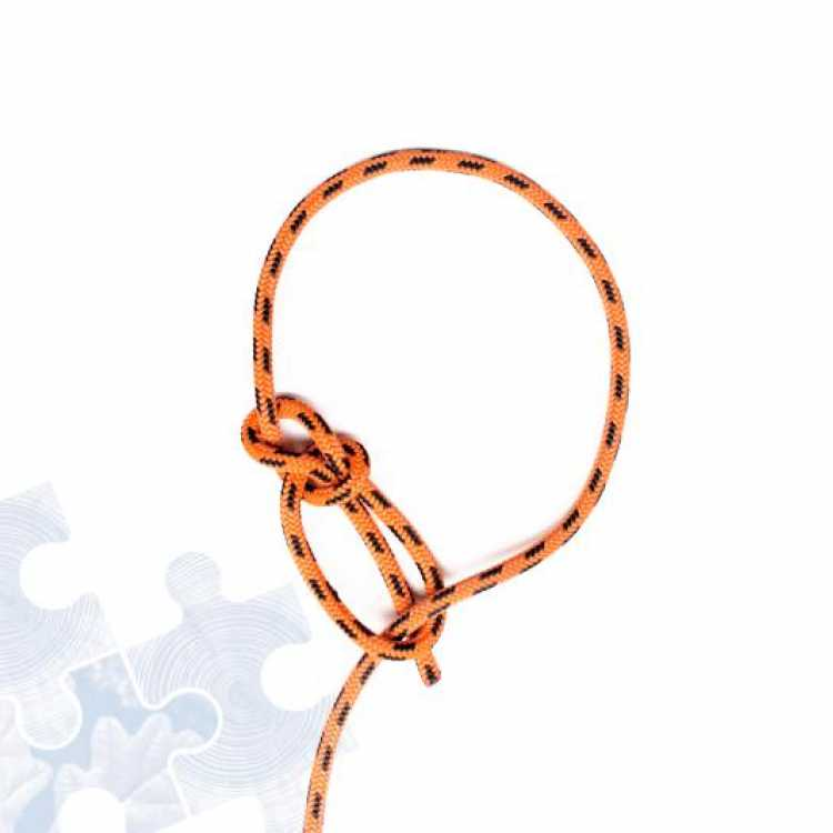 Final step on how to tie a Running Bowline Knot
