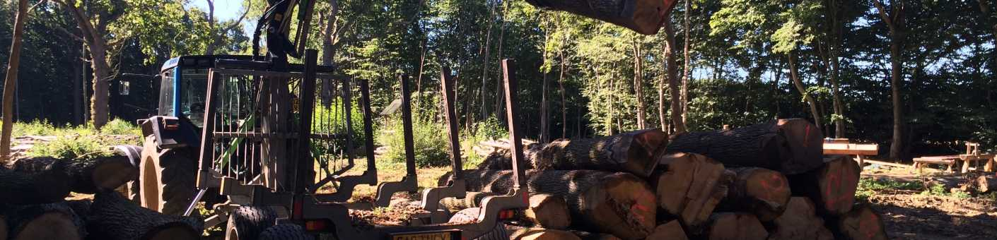 Scott Fraser Trainings Tractor is lifting up logs and arranging and stacking them up in a neat pile