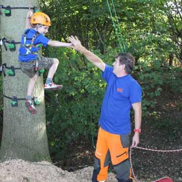 Tree climbing for children