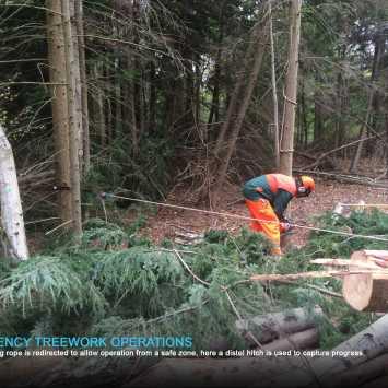 Emergency Treework Operations